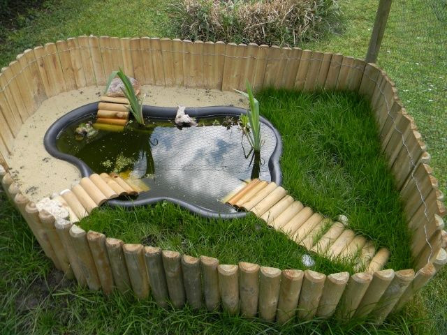 35 Best Diy Outdoor Turtle Pond - Home, Family, Style and ...